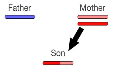 recombination1
