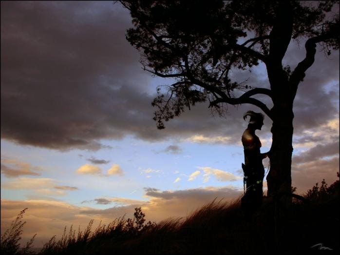 180804_pine_sunset_20170509234726861